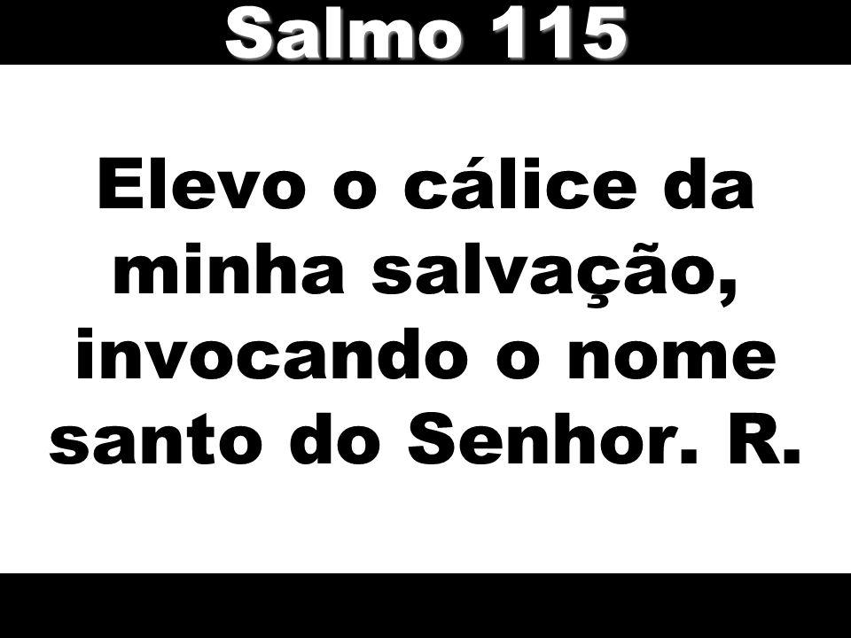 Elevo o cálice da minha salvação, invocando o nome santo do Senhor. R. Salmo 115