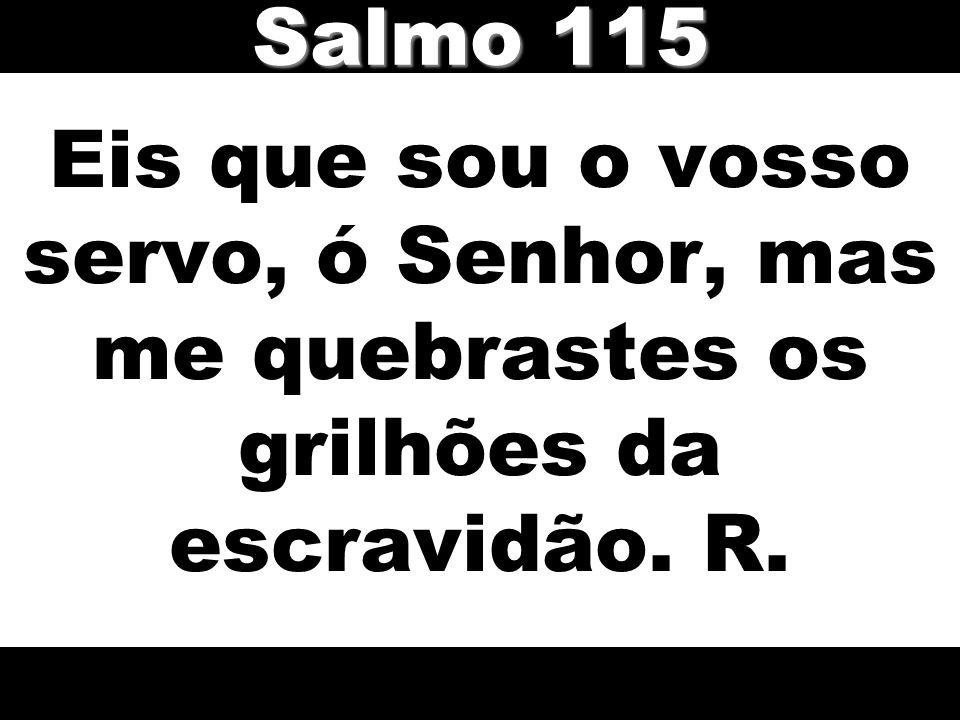 Eis que sou o vosso servo, ó Senhor, mas me quebrastes os grilhões da escravidão. R. Salmo 115