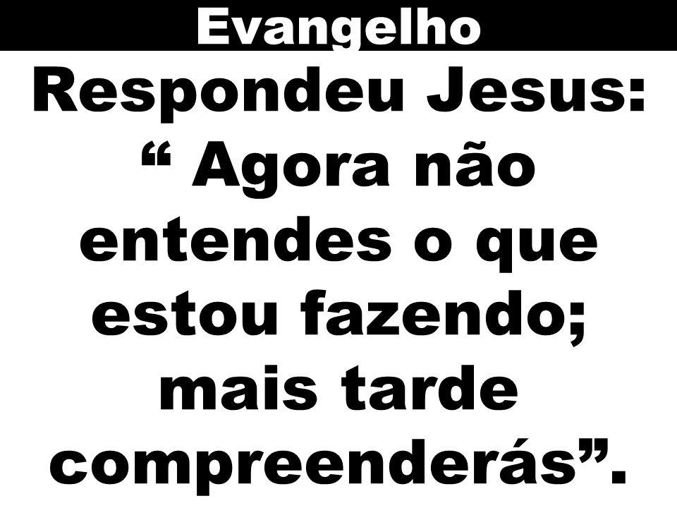 """Respondeu Jesus: """" Agora não entendes o que estou fazendo; mais tarde compreenderás"""". Evangelho"""