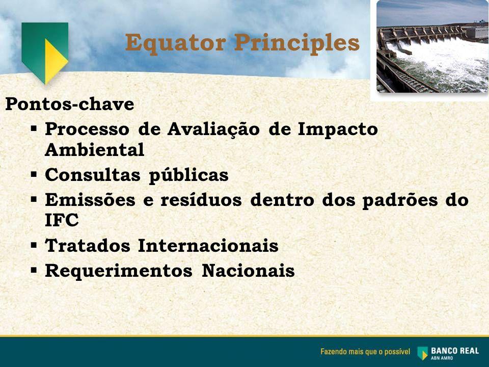 Pontos-chave  Processo de Avaliação de Impacto Ambiental  Consultas públicas  Emissões e resíduos dentro dos padrões do IFC  Tratados Internaciona