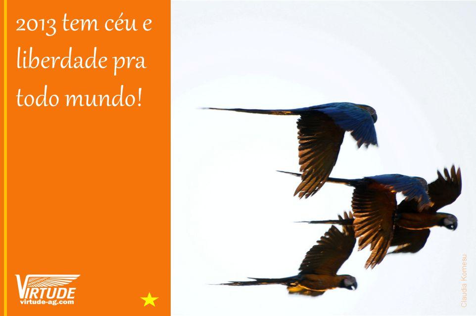 2013 tem céu e liberdade pra todo mundo! Claudia Komesu