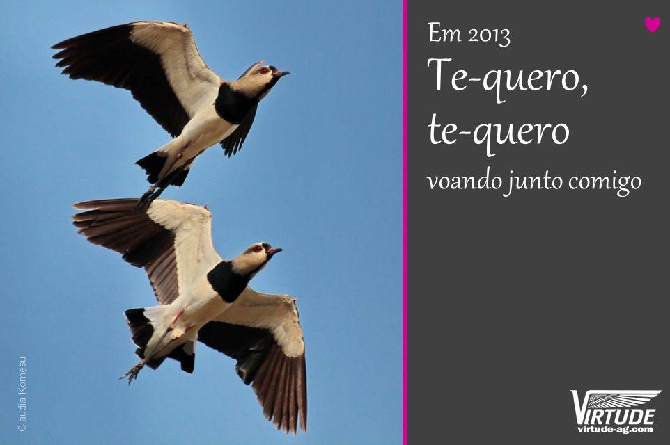 Em 2013 Te-quero, te-quero voando junto comigo Claudia Komesu