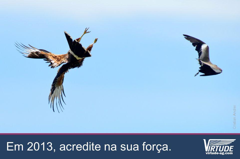 Em 2013, acredite na sua força. Cristian Andrei