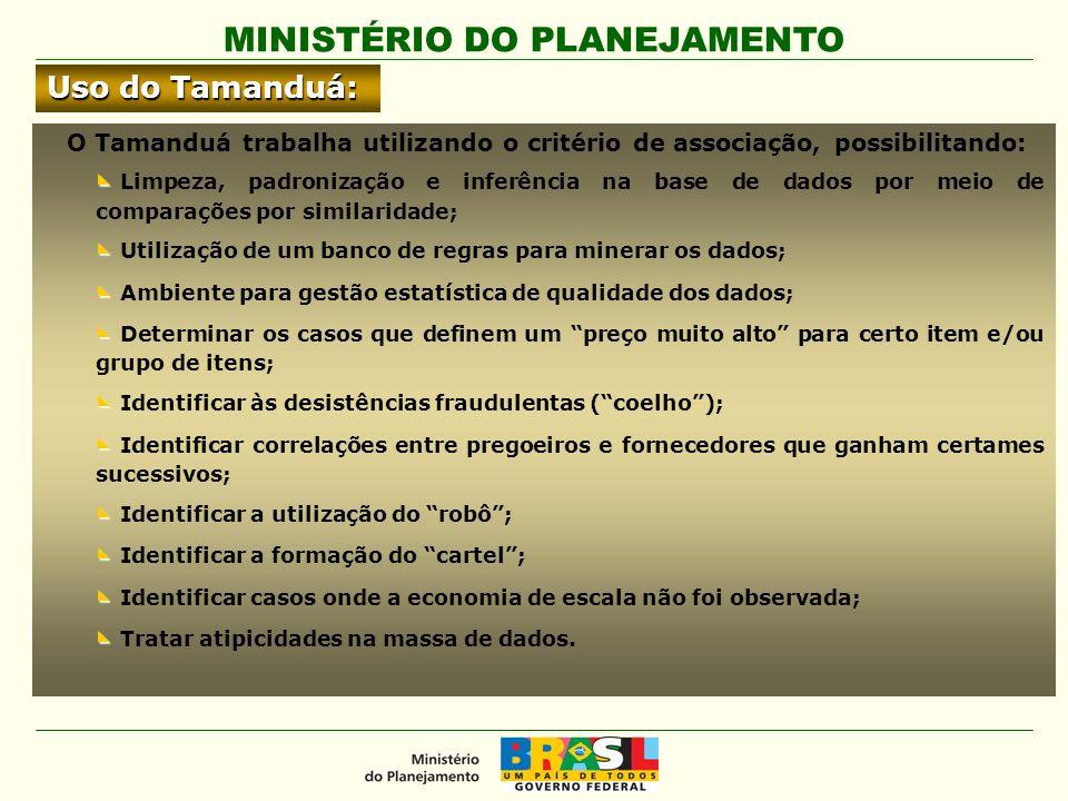 MINISTÉRIO DO PLANEJAMENTO Uso do Tamanduá: O Tamanduá trabalha utilizando o critério de associação, possibilitando: ◣ ◣ Limpeza, padronização e infer