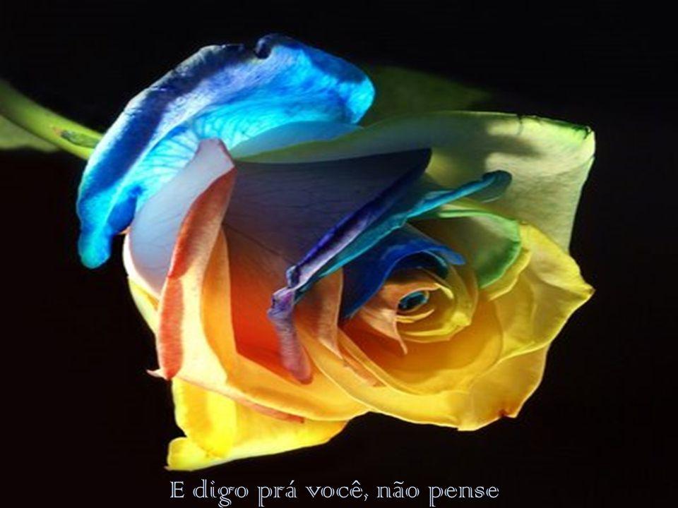 FORMATAÇÃO RUTH JACOBSEN EM 09/01/2013- SÃO PAULO ruthjacobsen@uol.com.br MUSICA- RICHARD- JAN A.P.