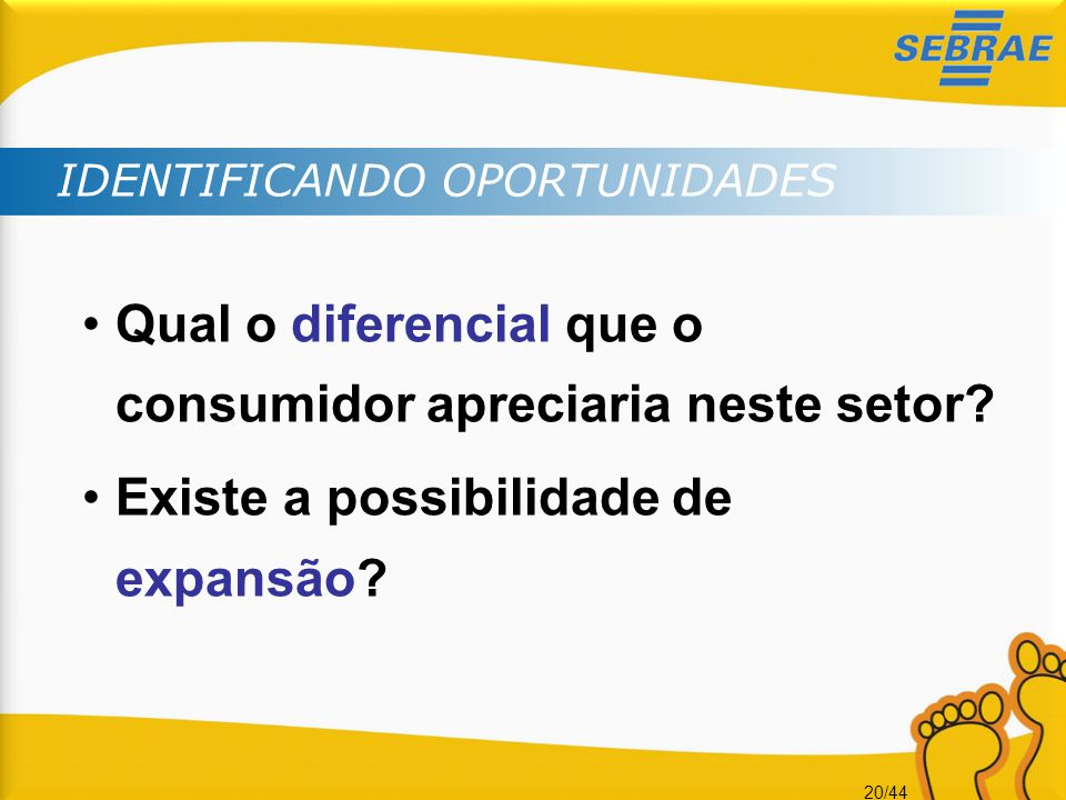20/44 IDENTIFICANDO OPORTUNIDADES •Qual o diferencial que o consumidor apreciaria neste setor? •Existe a possibilidade de expansão?