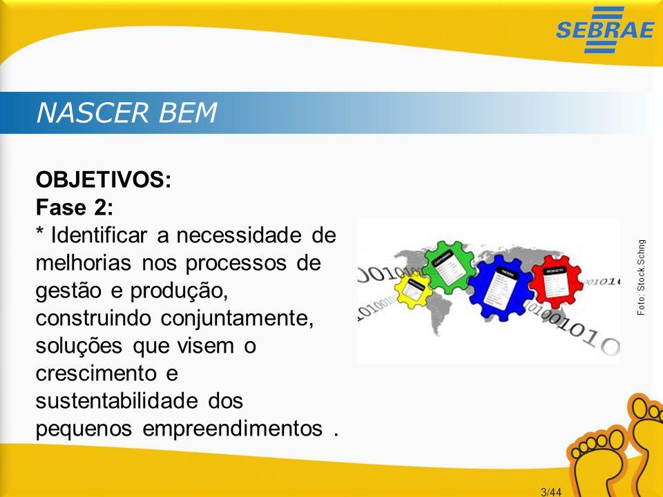 3/44 NASCER BEM OBJETIVOS: Fase 2: * Identificar a necessidade de melhorias nos processos de gestão e produção, construindo conjuntamente, soluções qu