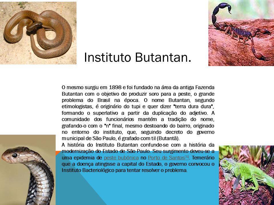 Instituto Butantan. O mesmo surgiu em 1898 e foi fundado na área da antiga Fazenda Butantan com o objetivo de produzir soro para a peste, o grande pro