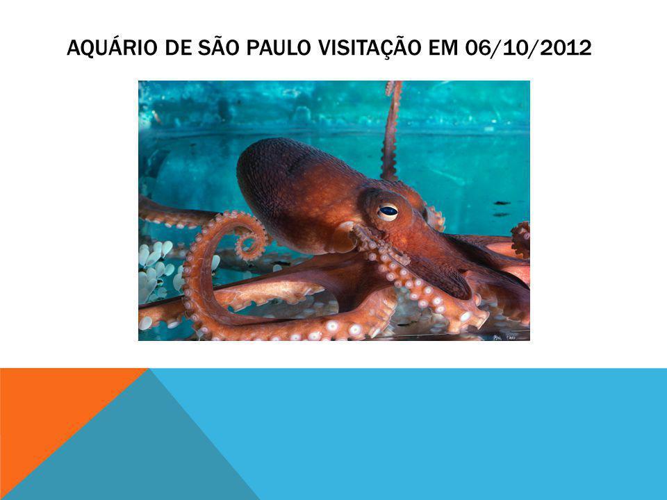AQUÁRIO DE SÃO PAULO VISITAÇÃO EM 06/10/2012
