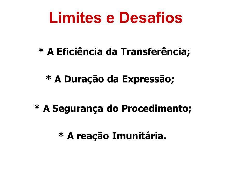 Limites e Desafios * A Eficiência da Transferência; * A Duração da Expressão; * A Segurança do Procedimento; * A reação Imunitária.