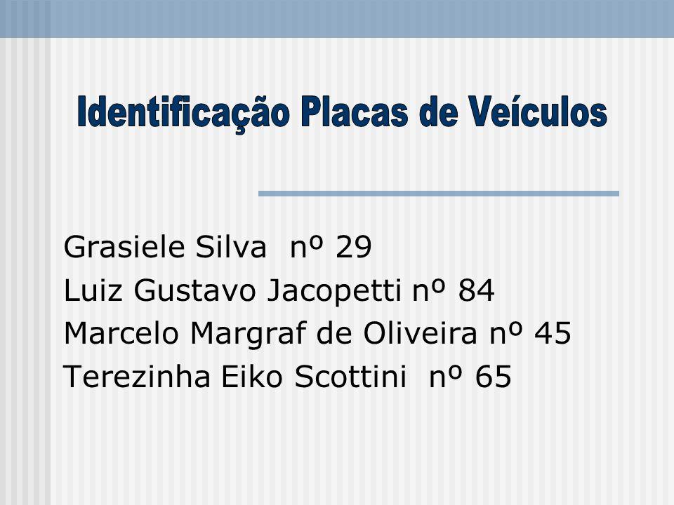 Grasiele Silva nº 29 Luiz Gustavo Jacopetti nº 84 Marcelo Margraf de Oliveira nº 45 Terezinha Eiko Scottini nº 65