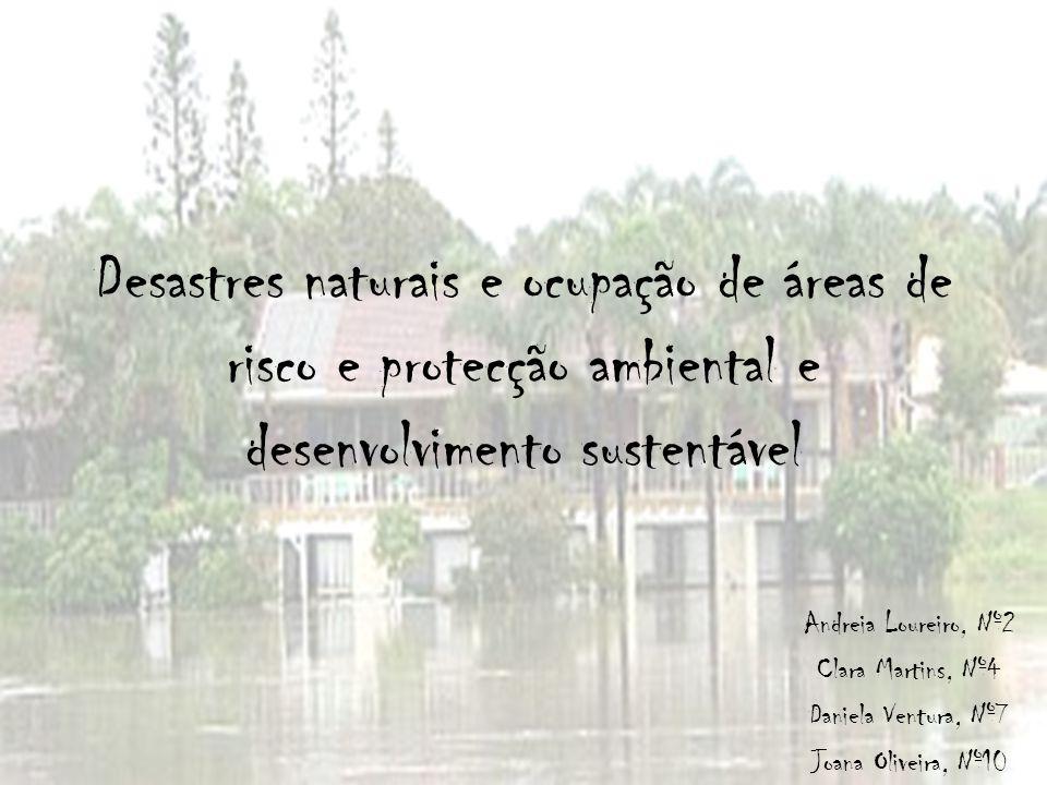 Desastres naturais e ocupação de áreas de risco e protecção ambiental e desenvolvimento sustentável Andreia Loureiro, Nº2 Clara Martins, Nº4 Daniela V