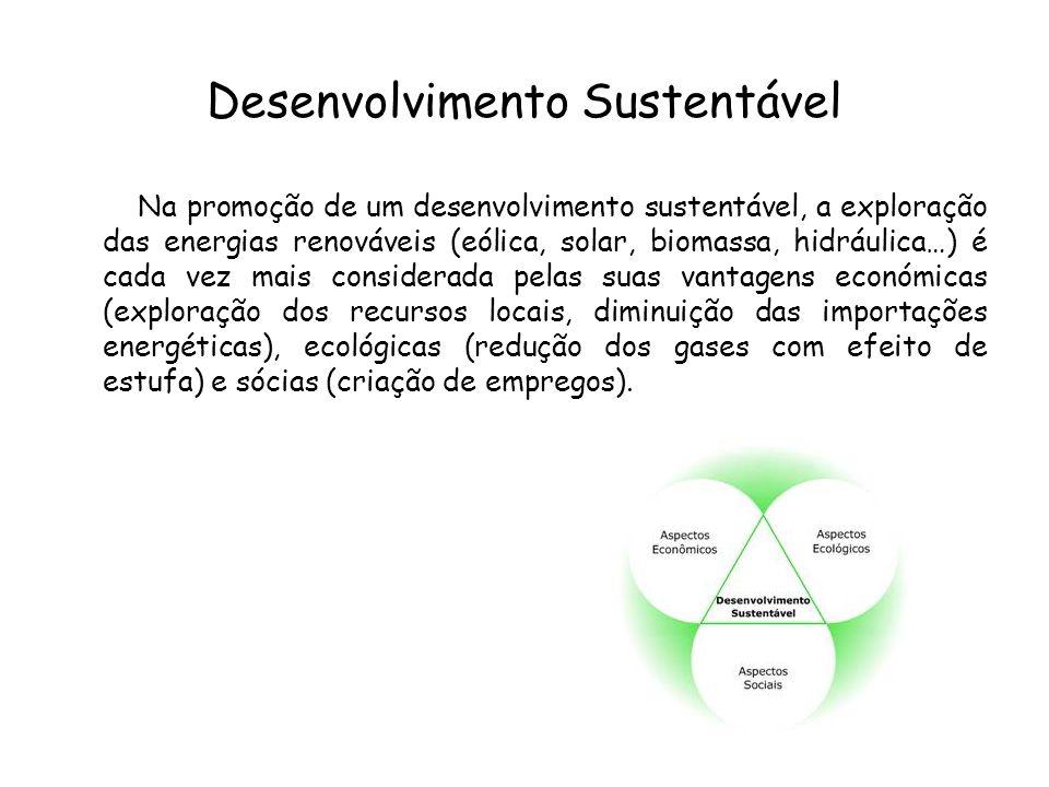 Desenvolvimento Sustentável Na promoção de um desenvolvimento sustentável, a exploração das energias renováveis (eólica, solar, biomassa, hidráulica…)