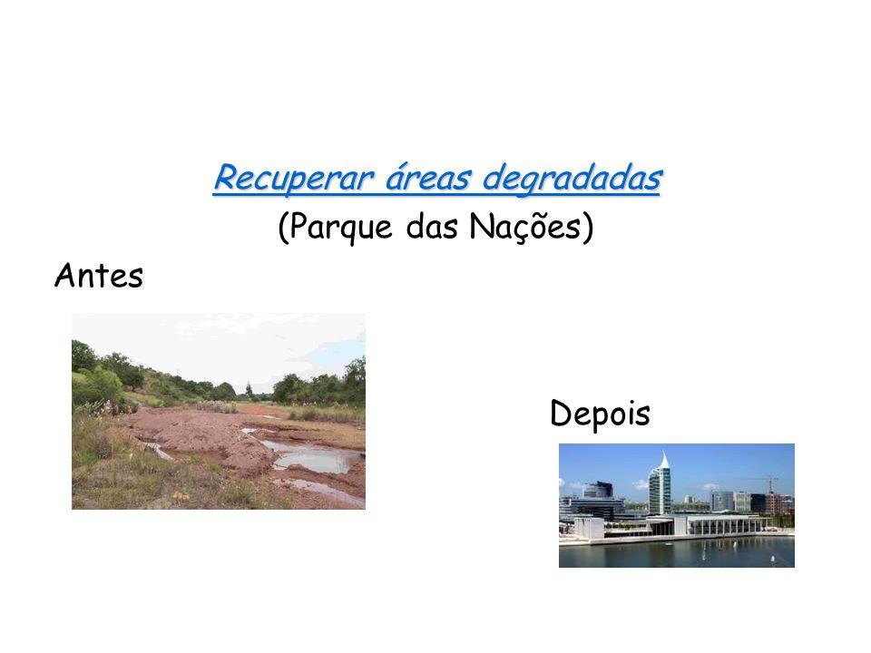 Recuperar áreas degradadas (Parque das Nações) Antes Depois