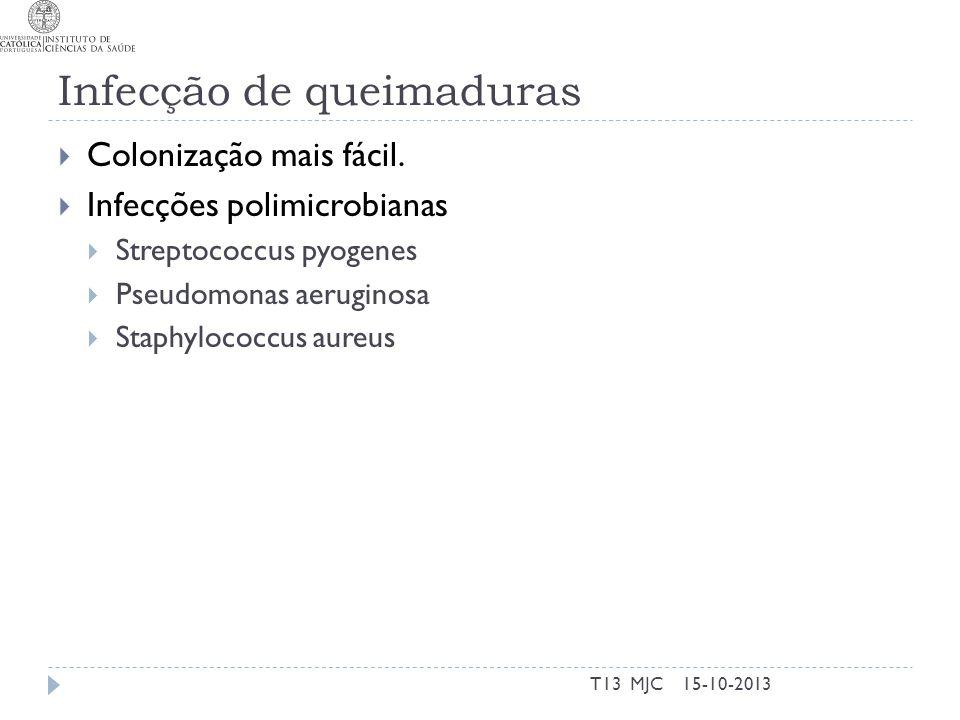 Infecção de queimaduras  Colonização mais fácil.  Infecções polimicrobianas  Streptococcus pyogenes  Pseudomonas aeruginosa  Staphylococcus aureu