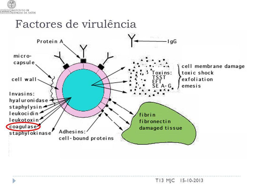Factores de virulência 15-10-2013T13 MJC