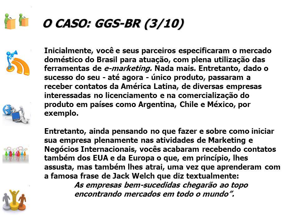 Inicialmente, você e seus parceiros especificaram o mercado doméstico do Brasil para atuação, com plena utilização das ferramentas de e-marketing.