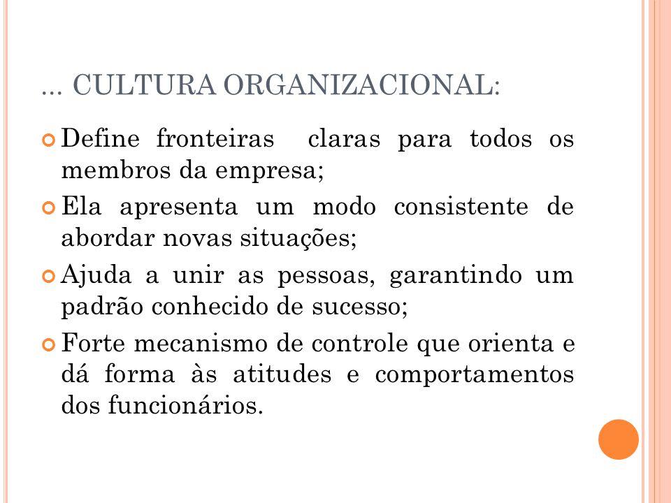 ... CULTURA ORGANIZACIONAL: Define fronteiras claras para todos os membros da empresa; Ela apresenta um modo consistente de abordar novas situações; A