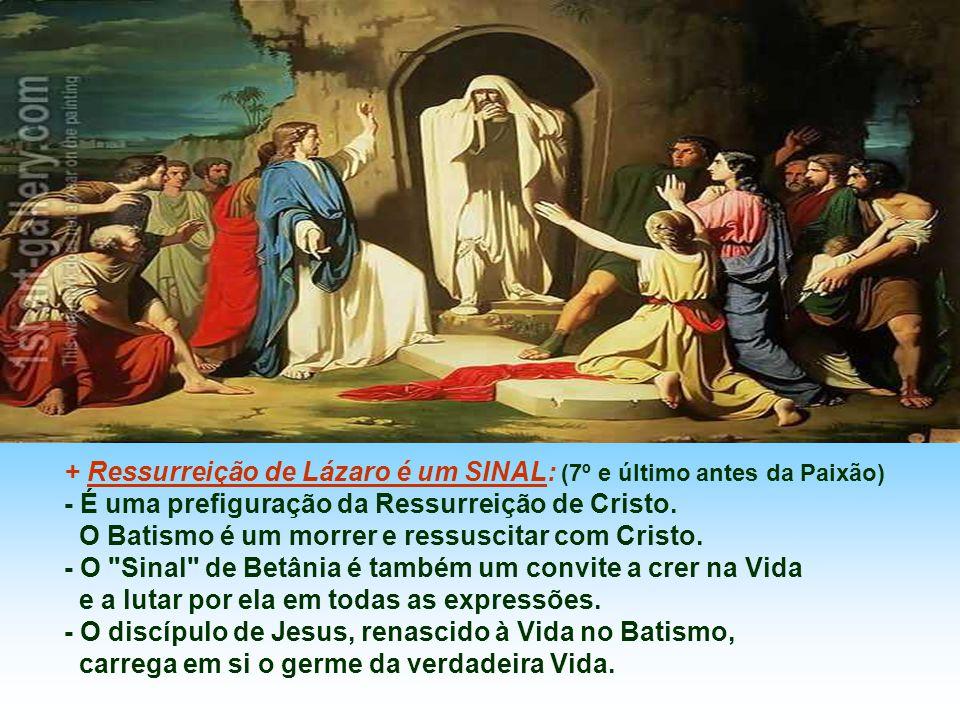 A Família de Betânia representa a Comunidade cristã, formada por irmãos e irmãs, não tem pais... Todos conhecem Jesus, são amigos de Jesus e acolhem J