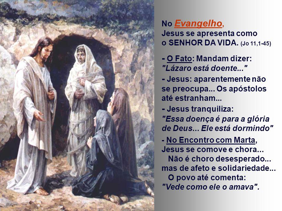 No Evangelho, Jesus se apresenta como o SENHOR DA VIDA.