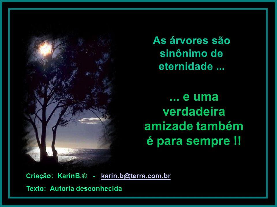 As árvores são sinônimo de eternidade...e uma verdadeira amizade também é para sempre !.