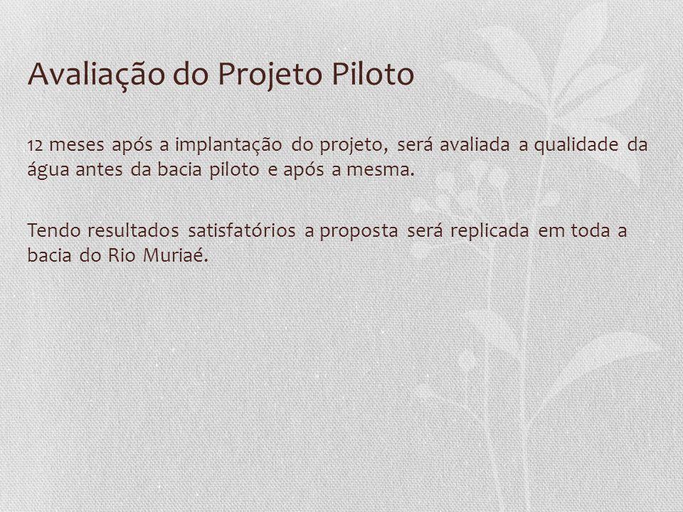 Avaliação do Projeto Piloto 12 meses após a implantação do projeto, será avaliada a qualidade da água antes da bacia piloto e após a mesma. Tendo resu