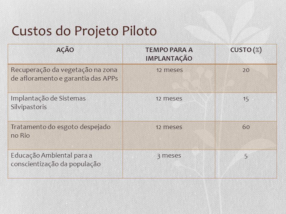 Custos do Projeto Piloto AÇÃOTEMPO PARA A IMPLANTAÇÃO CUSTO (%) Recuperação da vegetação na zona de afloramento e garantia das APPs 12 meses20 Implant