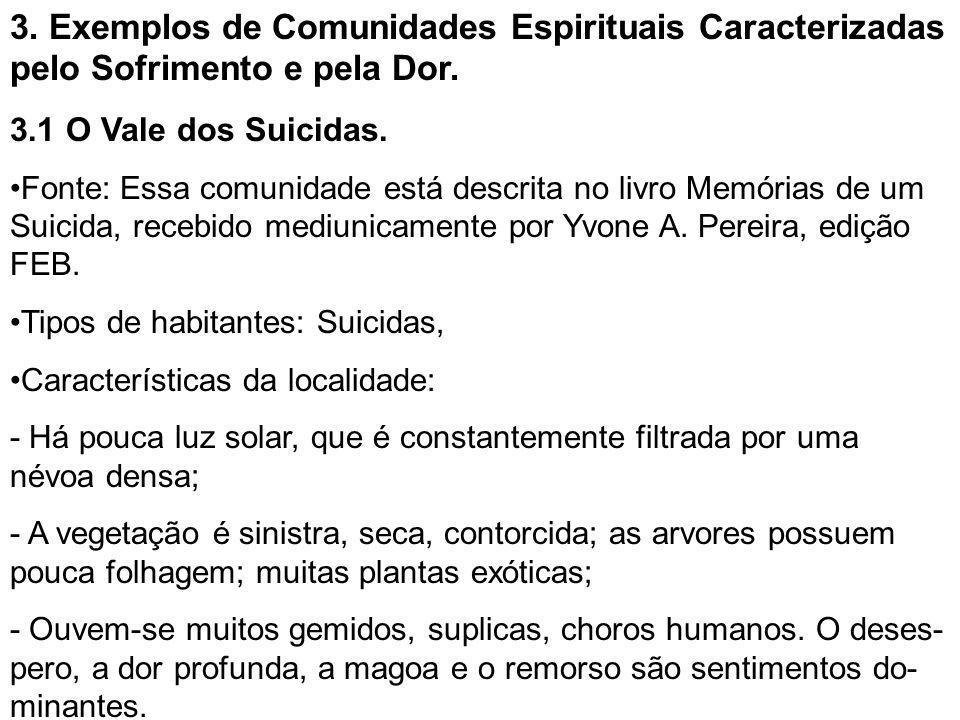 3. Exemplos de Comunidades Espirituais Caracterizadas pelo Sofrimento e pela Dor. 3.1 O Vale dos Suicidas. •Fonte: Essa comunidade está descrita no li