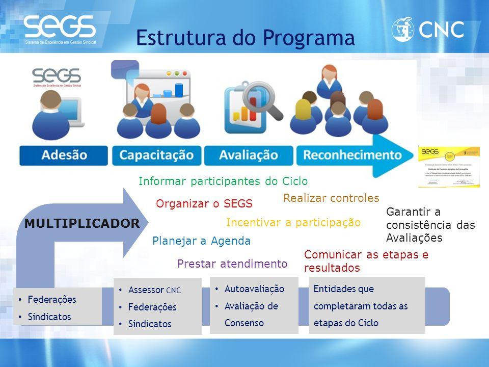 Estrutura do Programa • Federações • Sindicatos • Autoavaliação • Avaliação de Consenso Entidades que completaram todas as etapas do Ciclo Organizar o