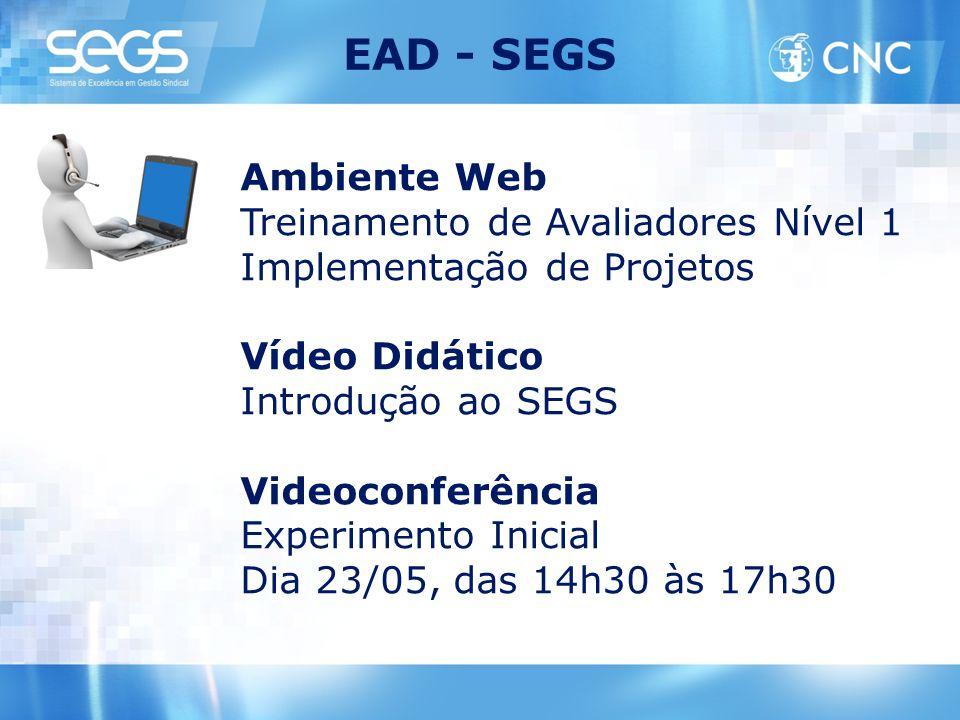 EAD - SEGS Ambiente Web Treinamento de Avaliadores Nível 1 Implementação de Projetos Vídeo Didático Introdução ao SEGS Videoconferência Experimento In