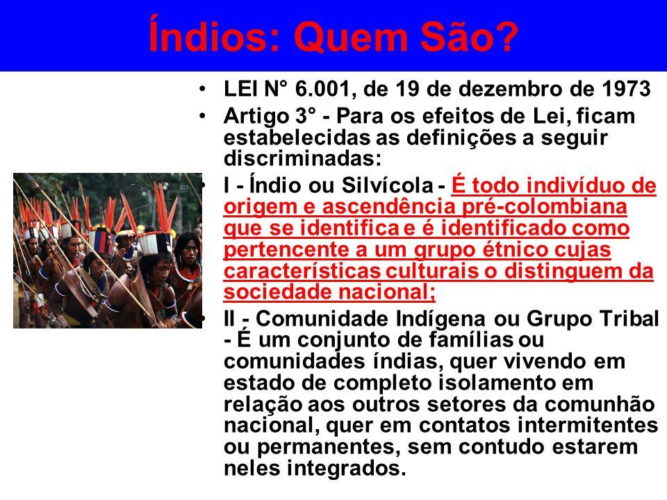 Índios: Quem São? •LEI N° 6.001, de 19 de dezembro de 1973 •Artigo 3° - Para os efeitos de Lei, ficam estabelecidas as definições a seguir discriminad