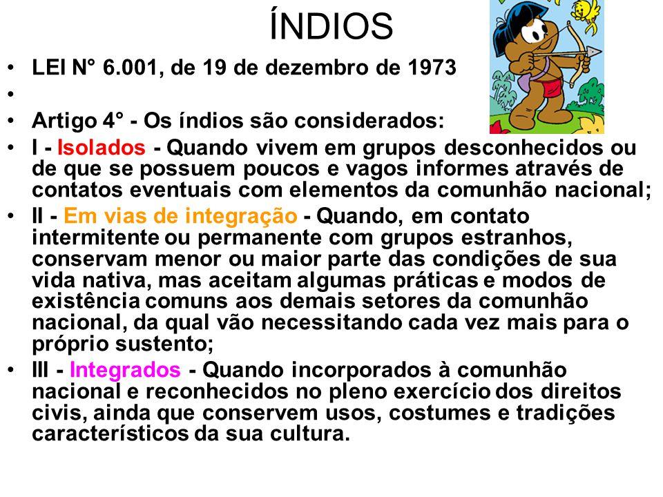ÍNDIOS •LEI N° 6.001, de 19 de dezembro de 1973 • •Artigo 4° - Os índios são considerados: •I - Isolados - Quando vivem em grupos desconhecidos ou de