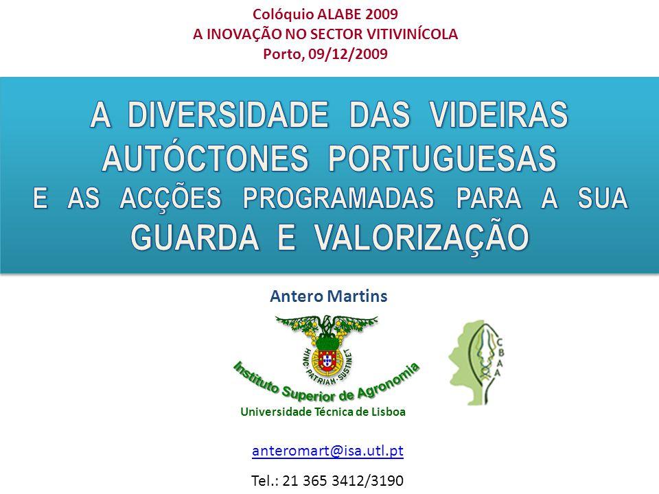 Colóquio ALABE 2009 A INOVAÇÃO NO SECTOR VITIVINÍCOLA Porto, 09/12/2009 Antero Martins anteromart@isa.utl.pt Tel.: 21 365 3412/3190 Universidade Técnica de Lisboa