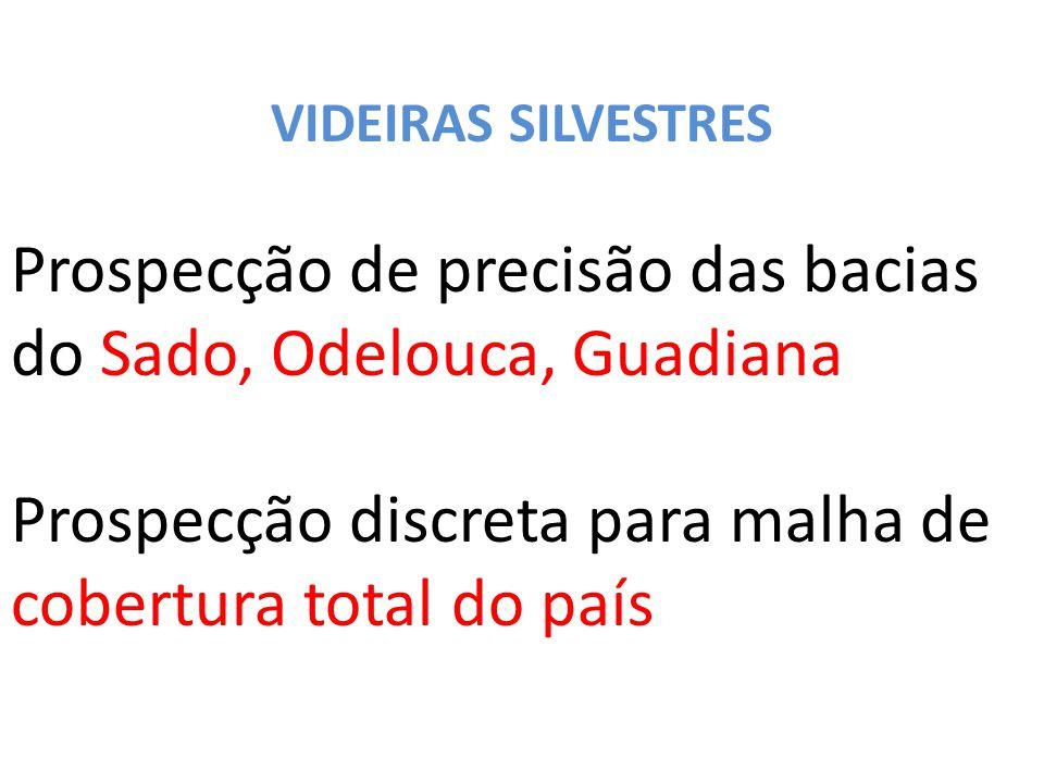 VIDEIRAS SILVESTRES Prospecção de precisão das bacias do Sado, Odelouca, Guadiana Prospecção discreta para malha de cobertura total do país