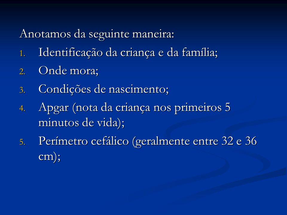 Anotamos da seguinte maneira: 1. Identificação da criança e da família; 2. Onde mora; 3. Condições de nascimento; 4. Apgar (nota da criança nos primei