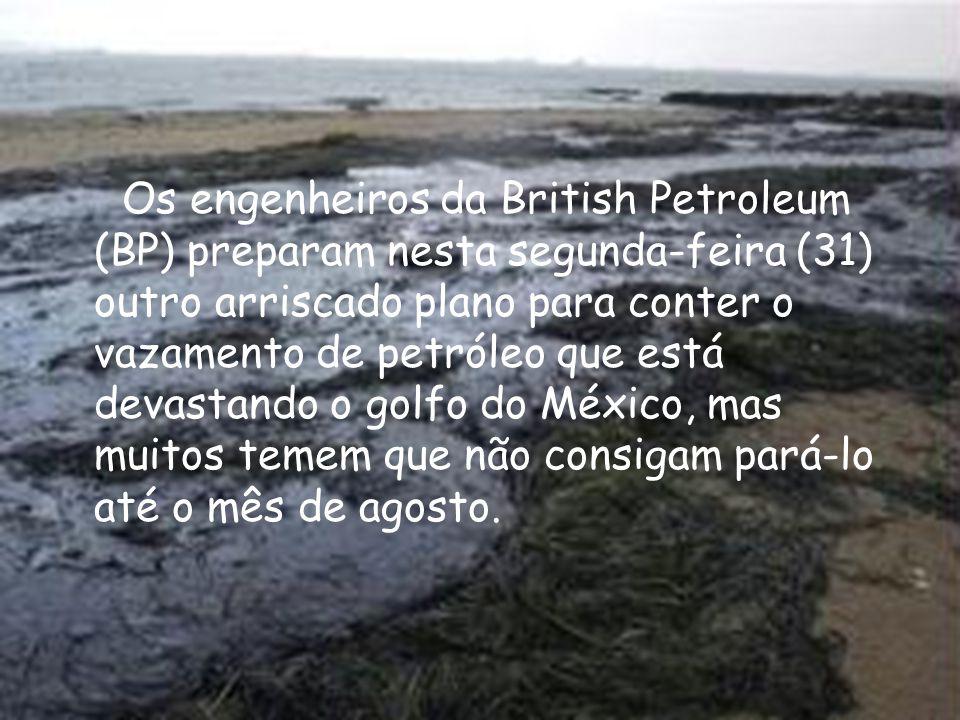 Os engenheiros da British Petroleum (BP) preparam nesta segunda-feira (31) outro arriscado plano para conter o vazamento de petróleo que está devastan