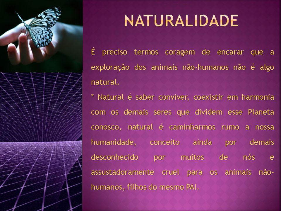É preciso termos coragem de encarar que a exploração dos animais não-humanos não é algo natural.