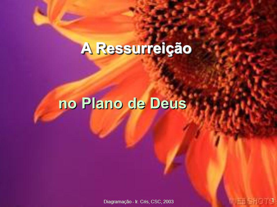 Diagramação - Ir. Cris, CSC, 2003 1 A Ressurreição no Plano de Deus A Ressurreição no Plano de Deus
