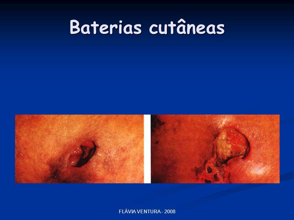 FLÁVIA VENTURA - 2008 Baterias cutâneas