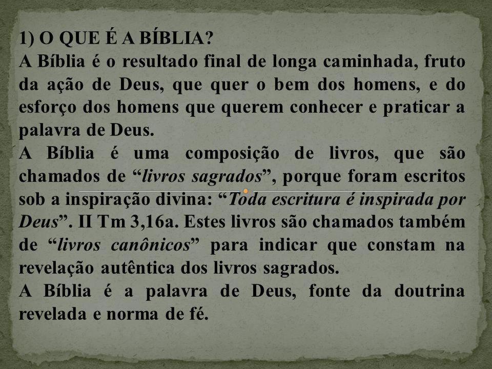 1) O QUE É A BÍBLIA? A Bíblia é o resultado final de longa caminhada, fruto da ação de Deus, que quer o bem dos homens, e do esforço dos homens que qu