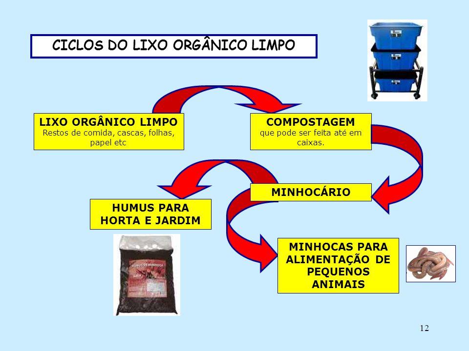 12 CICLOS DO LIXO ORGÂNICO LIMPO LIXO ORGÂNICO LIMPO Restos de comida, cascas, folhas, papel etc COMPOSTAGEM que pode ser feita até em caixas. MINHOCÁ