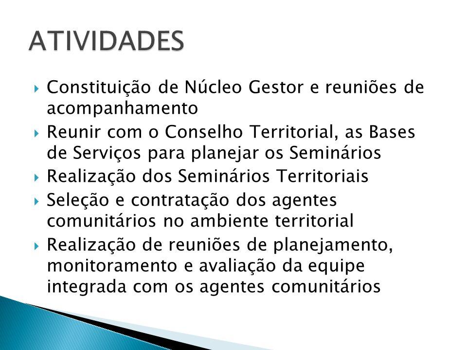  Constituição de Núcleo Gestor e reuniões de acompanhamento  Reunir com o Conselho Territorial, as Bases de Serviços para planejar os Seminários  R