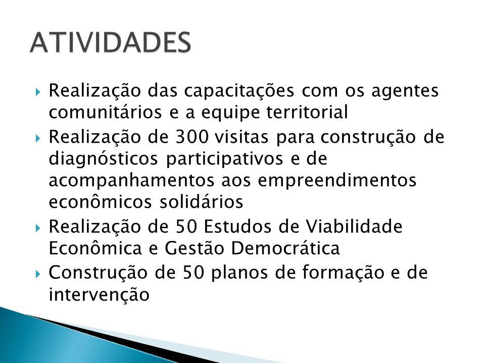  Realização das capacitações com os agentes comunitários e a equipe territorial  Realização de 300 visitas para construção de diagnósticos participa