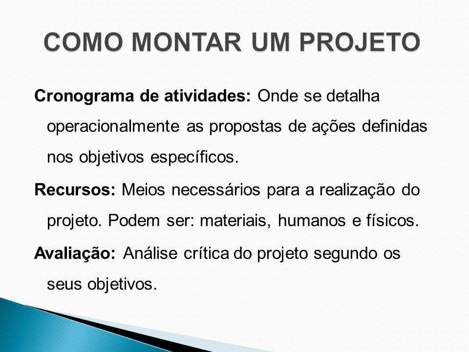Cronograma de atividades: Onde se detalha operacionalmente as propostas de ações definidas nos objetivos específicos.