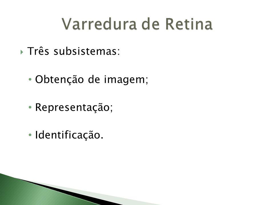  Três subsistemas: • Obtenção de imagem; • Representação; • Identificação.