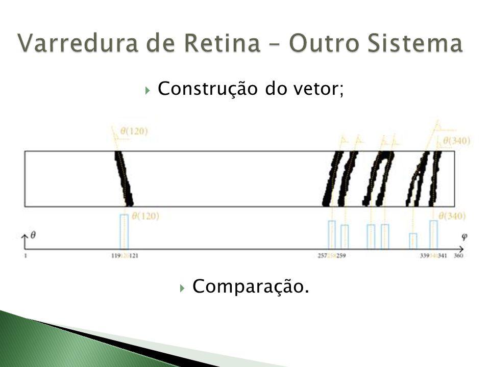  Construção do vetor;  Comparação.