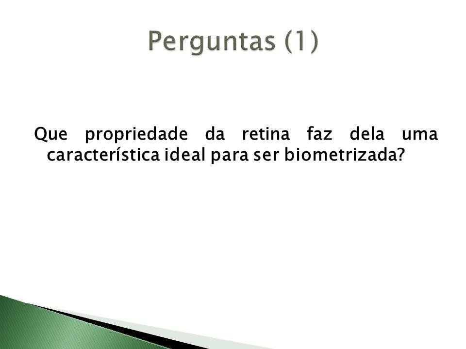 Que propriedade da retina faz dela uma característica ideal para ser biometrizada?