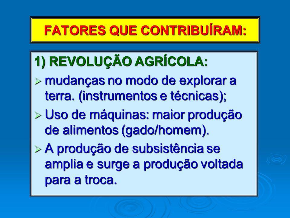 FATORES QUE CONTRIBUÍRAM: 1) REVOLUÇÃO AGRÍCOLA:  mudanças no modo de explorar a terra.