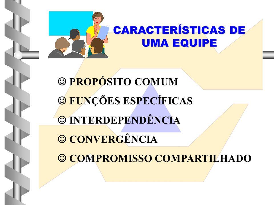 CARACTERÍSTICAS DE UMA EQUIPE  PROPÓSITO COMUM  FUNÇÕES ESPECÍFICAS  INTERDEPENDÊNCIA  CONVERGÊNCIA  COMPROMISSO COMPARTILHADO