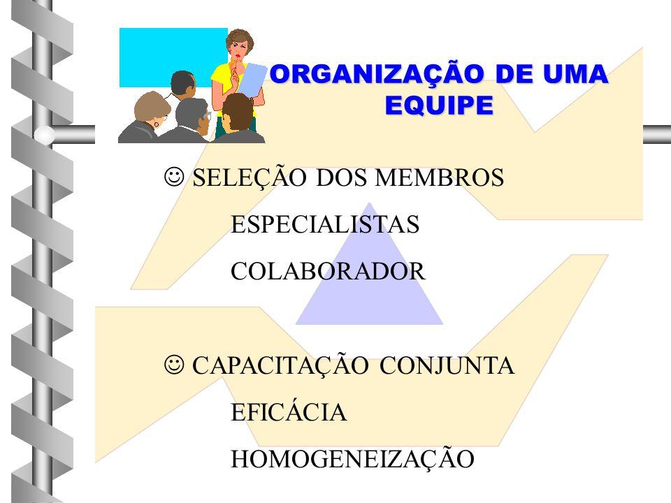 ORGANIZAÇÃO DE UMA EQUIPE  SELEÇÃO DOS MEMBROS ESPECIALISTAS COLABORADOR  CAPACITAÇÃO CONJUNTA EFICÁCIA HOMOGENEIZAÇÃO
